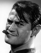 Actor Larry Storch