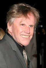 Actor Gary Busey