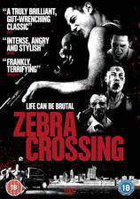 Movie Zebra Crossing