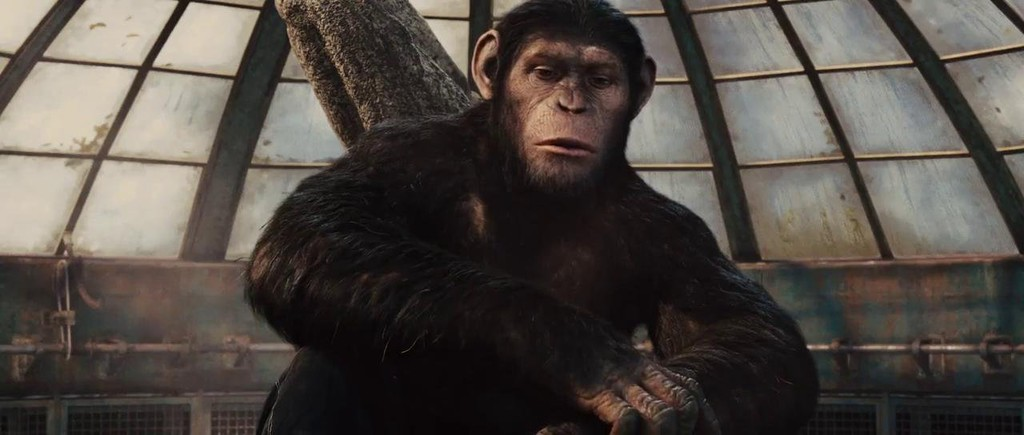 dodge landon rise of the planet apes with Rise Of The Pla  Of The Apes on StarDetail furthermore Some Images From First Film In Series also 2014 12 01 archive further Stunningly Realistic New Rise The Pla  Apes Images Released in addition Peliculas Pla a Simios 0 282072105.