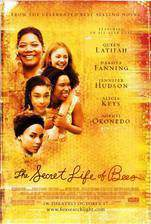 Movie The Secret Life of Bees