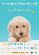 Movie 10 Promises to My Dog