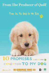 10 Promises to My Dog
