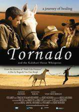 Movie Tornado and the Kalahari Horse Whisperer