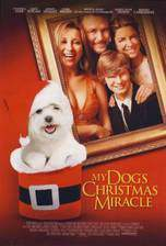 Movie My Dog's Christmas Miracle