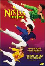 Movie 3 Ninjas Kick Back