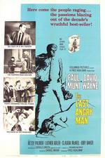 Movie The Last Angry Man