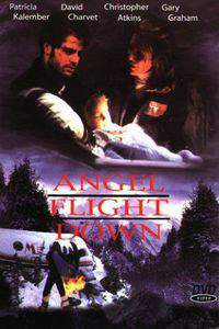 Angel Flight Down