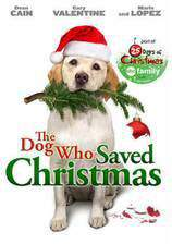 Movie The Dog Who Saved the Holidays