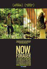 Movie Now, Forager