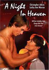 Movie A Night in Heaven