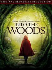 Movie Into the Woods