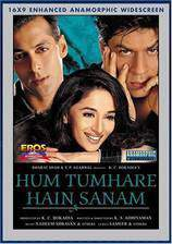 Movie Hum Tumhare Hain Sanam