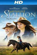 Movie Midnight Stallion