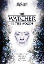 Movie The Watcher in the Woods