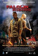Movie Falcon Rising