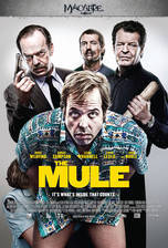Movie The Mule
