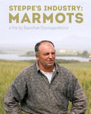 Steppe's Industry: Marmots
