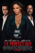 Movie The Perfect Guy