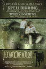 Movie Heart of a Dog
