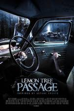 Movie Lemon Tree Passage