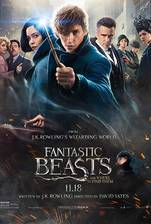 Movie Fantastic Beasts and Where to Find Them