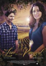 Movie Love in the Vineyard (Heart Felt)