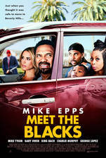 Movie Meet the Blacks