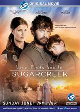 Movie Love Finds You in Sugarcreek