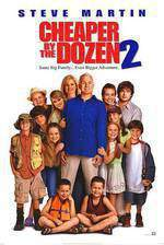 Movie Cheaper by the Dozen 2
