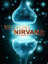 Movie Neurons to Nirvana