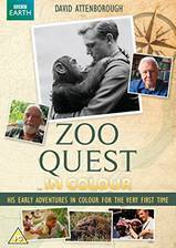 Movie Zoo Quest in Colour