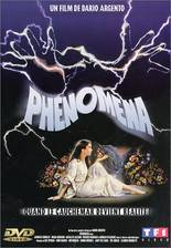 Movie Phenomena