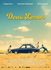 Movie Doua lozuri (Two Lottery Tickets)