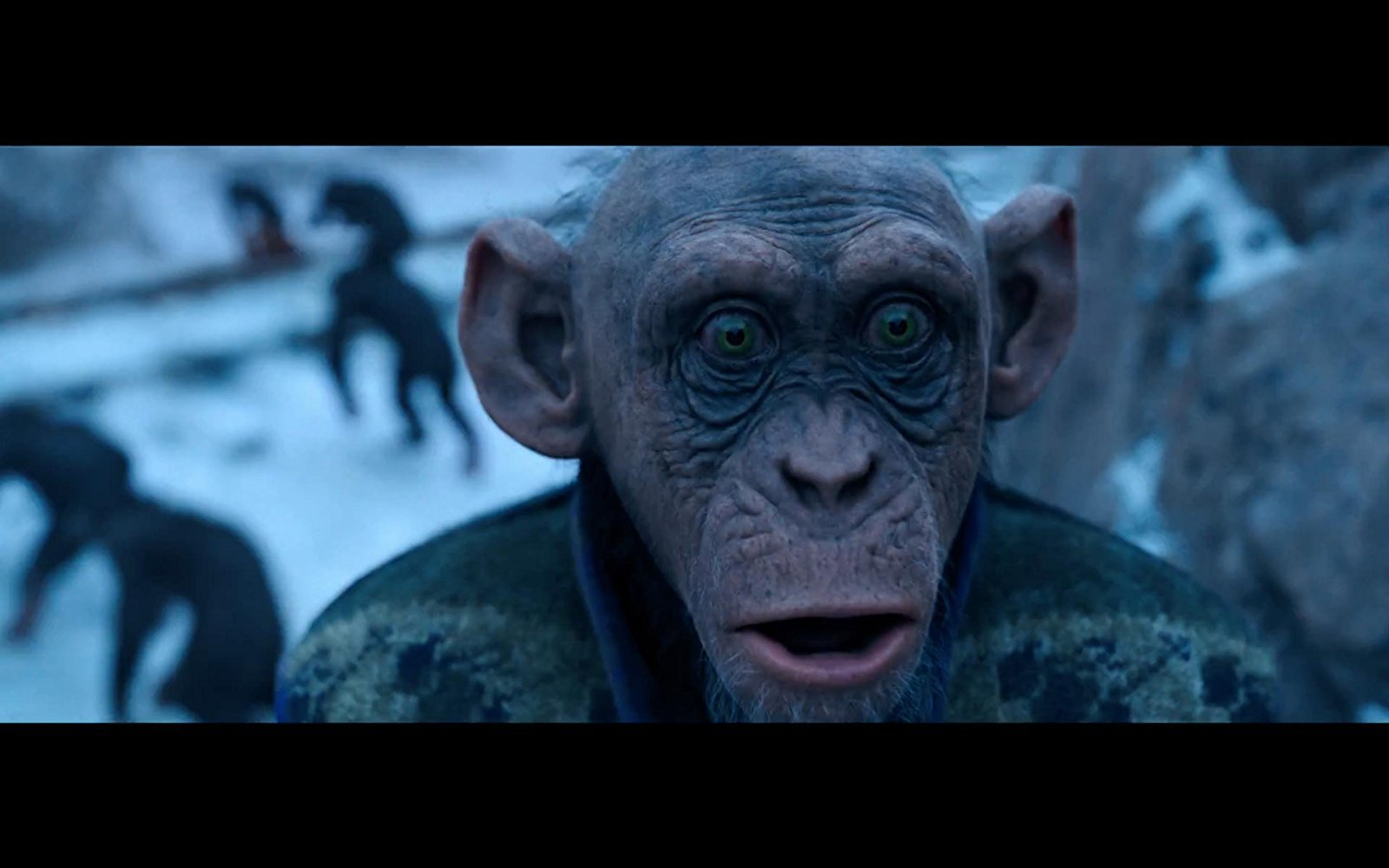 rise of the planet of the apes yify subtitles