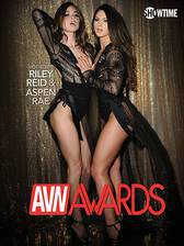 Movie Best in Sex: 2017 AVN Awards