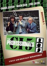 Movie The Professionals