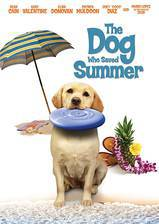 Movie The Dog Who Saved Summer