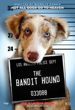 Movie The Bandit Hound