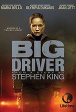 Movie Big Driver