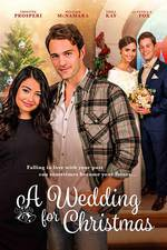 Movie A Wedding for Christmas