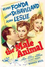 Movie The Male Animal