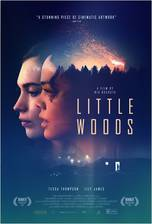 Movie Little Woods