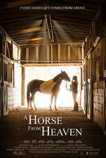 Movie A Horse from Heaven (A Champion Heart)