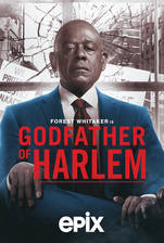Movie Godfather of Harlem