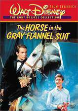 Movie The Horse in the Gray Flannel Suit