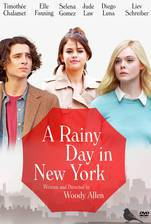 Movie A Rainy Day in New York