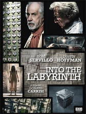Movie Into the Labyrinth