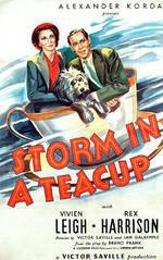 Movie Storm in a Teacup