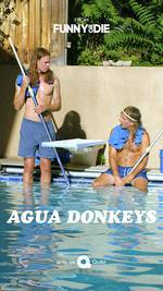 Movie Agua Donkeys